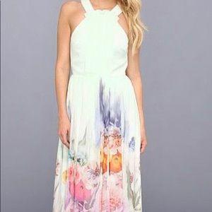 NWOT Ted Baker Green Floral Maxi Dress